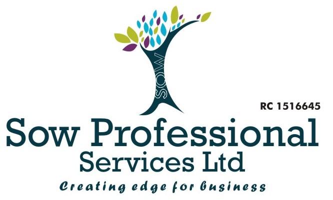 SOW Professional Partners RyteGate Technologies
