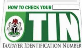 How To Check TIN Online